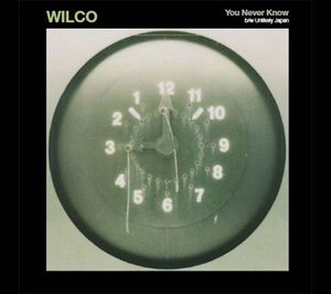 Wilco-you-never-know-7-inch