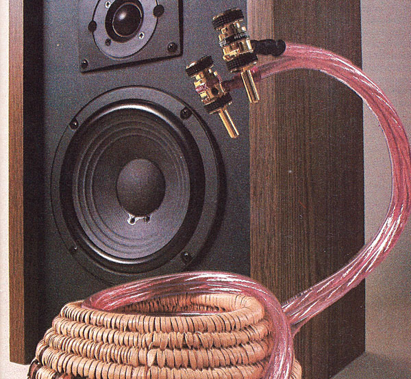 Speaker Cables: Can You Hear the Difference?