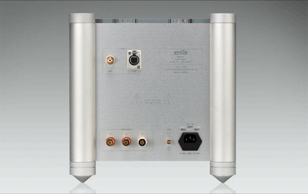 monoblock amp with 2 speaker terminals